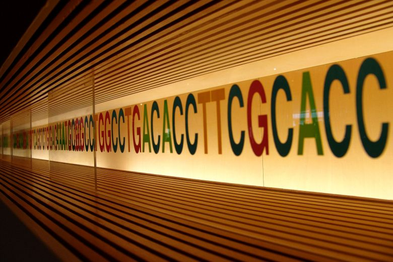 1599px-dna_sequence